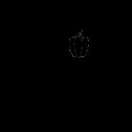 brand identity milano
